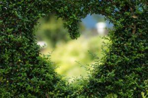 Heart image by Bianca Mentil via pixabay